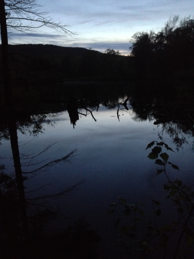 Late nights by the pond being attacked by blackflies